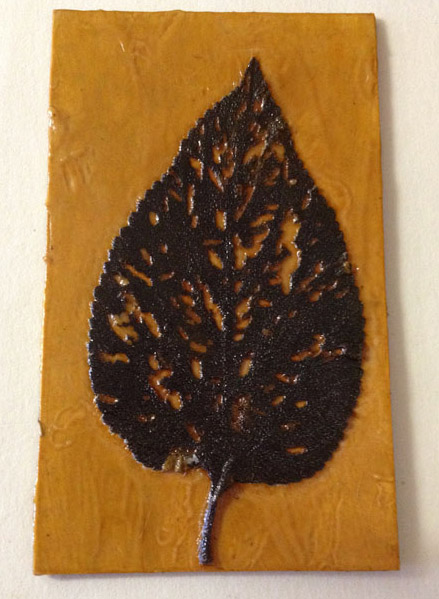 Jacky Lowry artist and printmaker, tiny collagraph printing plate of well-munched Lantana leaf.