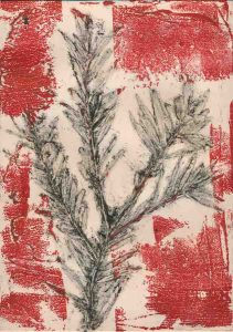 Fresh Growth: Treehaven Farm Bottlebrush EV1/4 ©Jacky Lowry 2020 Collagraph Print with surface roll