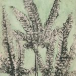 Rough Maidenhair Fern EV1/6 ©Jacky Lowry Handcoloured Collagrph Print