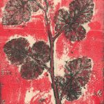 Wild Raspberry 1_2-7 Jacky Lowry 2020 Collagraph with surface roll